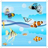 Butterflies and saltwater fish