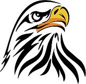 Vector - Eagle Illustration