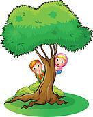 Kids hiding at the big tree