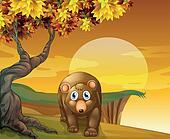 A brown bear beside a big tree near the cliff