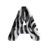 letters zebra