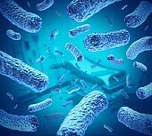 Hospital Germs