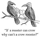 A crow wants to rooster