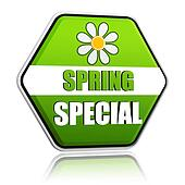 spring special green hexagon label with flower