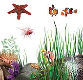 seabed. On the bottom of the ocean. Sea star, clown fish, sea horses and shells.