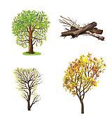 Trees isolated on white: Apple tree, Oak tree, timber, wood