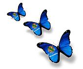 Three Oklahoma flag butterflies, isolated on white
