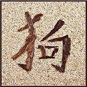 """Dog"" character of bark, stones background"