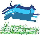 Cat, dog and rabbit riding logo