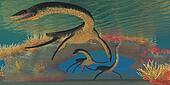 Plesiosaurus Sea