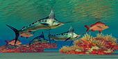Marlin Reef