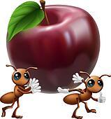 Ants carrying a big apple