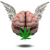 Winged Brain with Marijuana Leaf