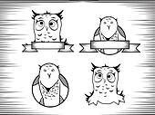 Owl Design Set