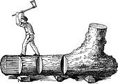 How a Tree is Made into Lumber, vintage engraving