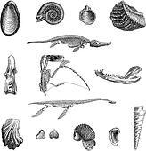 Jurrasic Fauna, vintage engraving