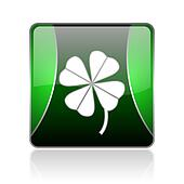 four-leaf clover black and green square web glossy icon