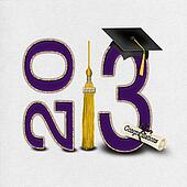 purple gold graduation for 2013