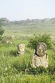 "Stone idol in the steppe. National Park "" Stone Tombs "". Donetsk. Ukraine"