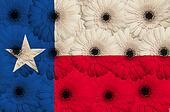 stylized  flag of american state of texas    with gerbera flower