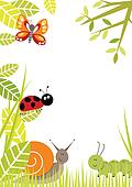 Bugs Border
