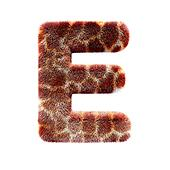 Isolated giraffe alphabet letter