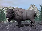 Bison in the nature - 3D render