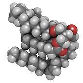 Vegetable oil unsaturated triglyceride molecule