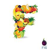 Vector Alphabet From Fruit. Letter F