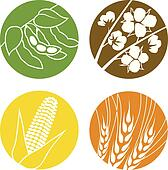 Soybeans, Cotton, Corn and Wheat