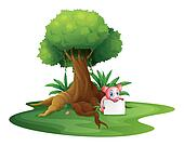 A pig holding an empty signage under the big tree