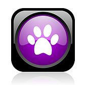 animal footprint black and violet square web glossy icon
