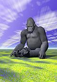 A gorilla in meditative position and sky