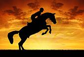 rider on a jumping horse