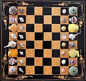 Chess board with sea animals