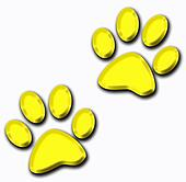 3d golden pet paws