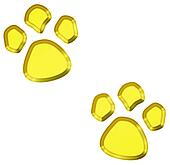 golden pet paw prints