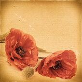 Vintage floral background with poppy flowers on a brown background old paper citizens, for any of your project