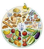 alimentaci?ne quilibrada & Nutritio