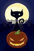 Black Cat on a Halloween Night