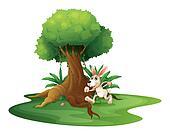 A rabbit playing near the big tree