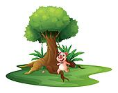 A pig standing under the big tree