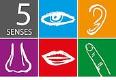Five senses icon set - Vector Illustration