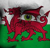 face with the Welsh flag painted on it