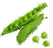 green peas and pea pods vector illustration of blots