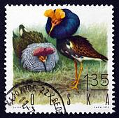 Postage stamp Poland 1970 Ruffs, Game Bird