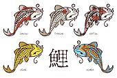 "Koi carp breeds classification, with japanese hieroglyph ""carp"""