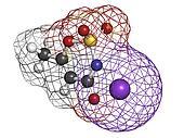 Acesulfame artificial sweetener, molecular model