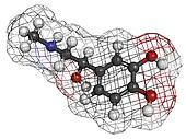 Adrenaline (epinephrine) hormone and neurotransmitter, molecular model. Atoms are represented as spheres with conventional color coding: hydrogen (white), carbon (grey), oxygen (red), nitrogen (blue)