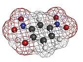 2,4-Dinitrophenol (DNP), molecular model